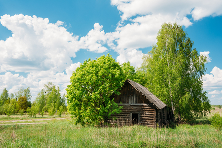 exclusion: The Abandoned Small Wooden Country Blockhouse In Exclusion Area After Chernobyl Catastrophe Against The Background Of Scenic Rural Summer Green Landscape With Blue Cloudy Sky. Stock Photo