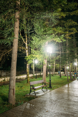 lighted: Borjomi, Samtskhe-Javakheti, Georgia. Scenic View Of Lighted Walkways Or Roads, Greenwood At Night In City Park. Popular Place For Tourists And Locals.