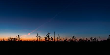 Berezinsky, Biosphere Reserve, Belarus. Autumn Dawn Landscape Wi