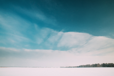 Snow-covered Field Meadow In Winter Frosty Sunny Day Banco de Imagens
