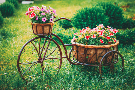 Decorative Vintage Model Old Bicycle Equipped Basket Flowers Garden