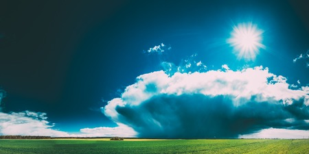 Field Or Meadow Landscape With Green Grass Under Scenic Spring Blue Dramatic Sky With White Fluffy Clouds. Rain Clouds On Horizon On A Sunny Day. Panorama Of Agricultural Landscape