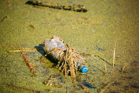 Old Plastic Bottle Floats In Water Of Swamp Or Pond. Grass Overgrown On Used Empty Bottle Left In Water. Eco Concept Garbage Disaster From Ecological Pollution Of Environment.