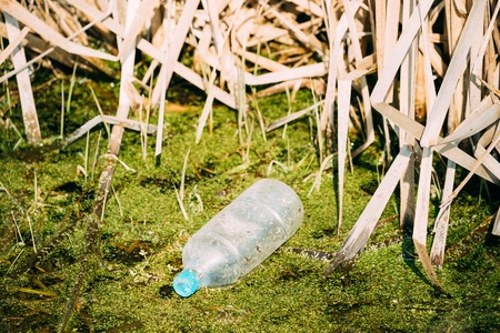 Old Plastic Bottle Floats In Water Of Swamp Or Bog. Used Empty Bottle Left In Water. Eco Concept Garbage Disaster From Ecological Pollution Of Environment. Waste Pollution Problem