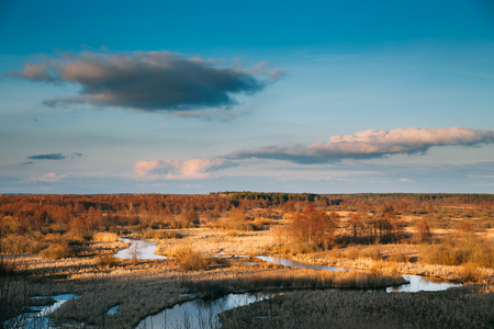 Beautiful Sunset Above Forest And River Landscape In Late Autumn Or Early Spring Season. Scenic View Of Evening Sky. Golden Colors Of European Nature Banco de Imagens