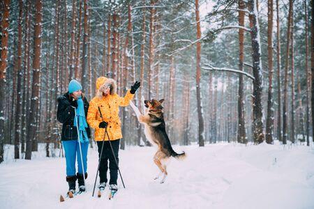 Deux femmes caucasiennes actives, jeunes et adultes, s'amusent à skier et à jouer avec un chien dans la forêt enneigée d'hiver. Mode de vie sain actif sur la nature hivernale