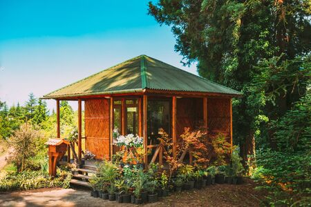 Wooden Shed House Store With Seedlings And Flowers Beds In Sunny Spring Summer Day.