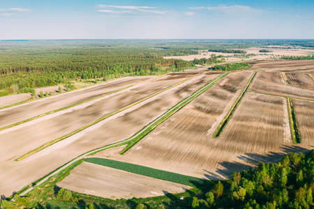 Aerial View Spring Empty Field With Windbreaks Landscape. Top View Of Field And Forest Belt. Drone View Birds Eye View. A Windbreak Or Shelterbelt Is A Planting Usually To Protect Soil From Erosion.
