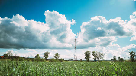 Telecommunications Cell Phone Tower With Antenna And Countryside Rural Field Landscape With Young Wheat Sprouts. Belarus.