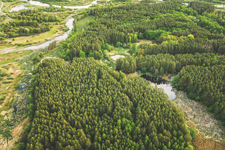 Aerial View Green Forest Woods And River Marsh In Summer Landscape. Top View Of Beautiful European Nature From High Attitude In Summer Season. Drone View. Birds Eye View