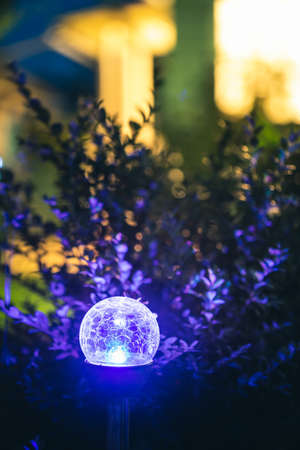 Night View Of Flowerbed Illuminated By Energy-Saving Solar Powered Colorful Multi-colored Lantern On Yard. Beautiful Small Garden With Blue Light, Lamp In Flower Bed. Garden Design