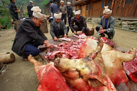 piggish: Zengchong village, Guizhou, China - April 12, 2010: Asian farmers are pig producers, butchered pig carcasses on the road, in the Chinese village of ethnic minorities, Zengchong Dong Village, April 12, 2010.