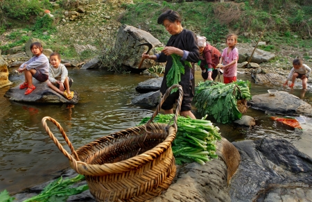 kinfolk: Zengchong village, Guizhou, China - April 11, 2010: Asian family, two women and four children, are in the middle of the village river, adult Chinese women wash the green plants, Zengchong Dong ethnic minority Village,, Guizhou province, Southwestern China