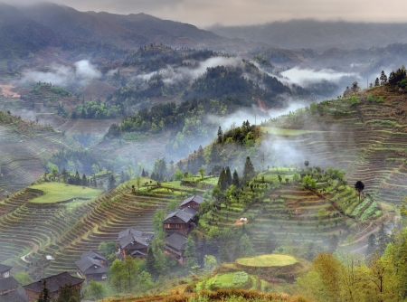 arable farming: Spring fog in mountains of southwestern China Longsheng rice terraces. Stock Photo