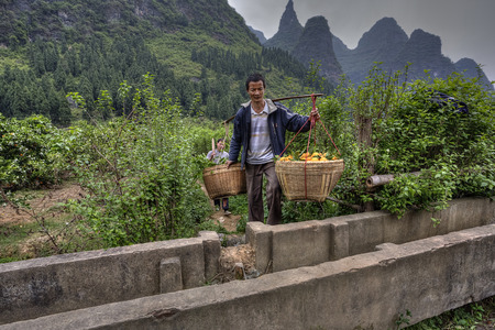 full suspended: Yangshuo, Guangxi, China - March 29, 2010:  Chinese man peasant farmer carriage goods wicker basket with harvest of freshly picked fruit oranges balanced on a pole, rural, highlands, citrus garden.
