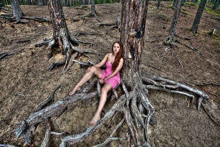 auburn hair: One teen girl resting in nature, sitting on the roots of a tree in a pine forest.