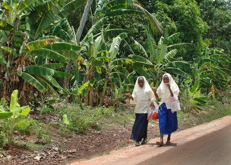 femmes muslim: Zanzibar, Tanzanie - le 18 F�vrier 2008: Deux �coli�res musulmanes portant le hijab, marchant le long de la c�t� de la route devant les plantations de bananes et de manger la cr�me glac�e sur un b�ton.