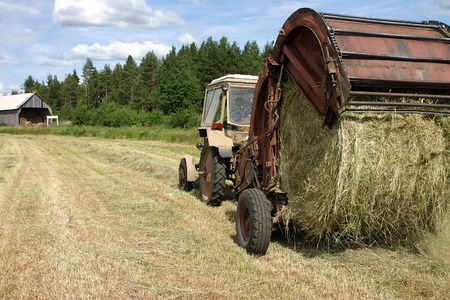 agriculturalist: Lemozero, Olonets, Karelia, Russia - July 26, 2006: Round baler dumping a freshly rolled hay bale.
