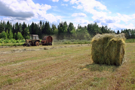 peasant farming: Lemozero, Olonets, Karelia, Russia - July 26, 2006: Hay meadow with a fresh roll haystack, farm tractor and round baler works on hayfield.