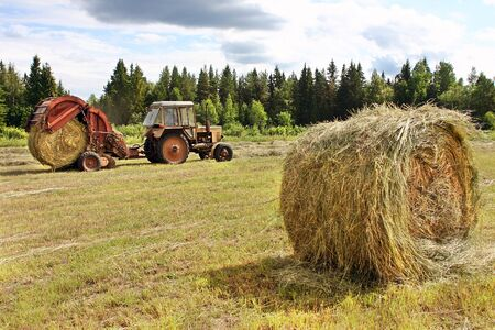 fodder: Lemozero, Olonets, Karelia, Russia - July 26, 2006: Harvesting of fodder, Round bales of hay in the field, farm tractor with a round baler working in russian farmland.