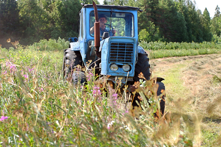 agriculture machinery: Lemozero, Olonets, Karelia, Russia - July 26, 2006: Blue farm tractor working in a field of freshly cut during haymaking.