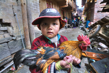 5 years old: Zengchong Dong Village, Guizhou Province, China - April 13, 2010: Unknown Asian boy about 5 years old, holding a multicolored adult rooster.