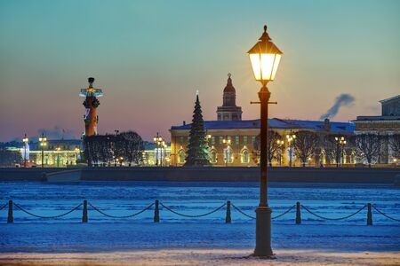 to spit: Christmas tree on the Spit of Vasilyevsky Island, a winter evening in Saint Petersburg, Russia. Stock Photo