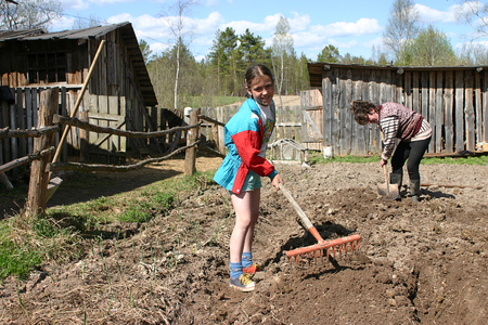 Lipovec village, Tver region, Russia - May 7, 2006: Tanya 11 years old girl, rake the ground with hand rakes, on a plot of rural land near a wooden house