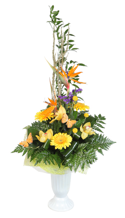 gerbera daisies: Bouquet of flowers in plastic vase, yellow gerbera daisies and pale yellow orchids, decorated with ferns, isolated on white background.