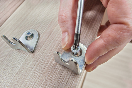 Screw Being Screwed In Wooden Furniture using phillips screwdriver close-up. Stock Photo