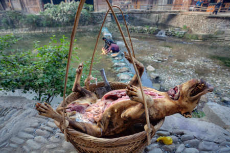 karkas: Zhaoxing Dong Village, Guizhou Province, China -  April 9, 2010: Carcass slaughtered and eviscerated dog is in a wicker basket near the river. Redactioneel