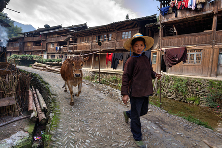 tred: Zhaoxing Dong Village, Guizhou Province, China -  April 9, 2010: Asian woman in wide-brimmed straw hat, goes on a rural Street, while on the rope red cow.