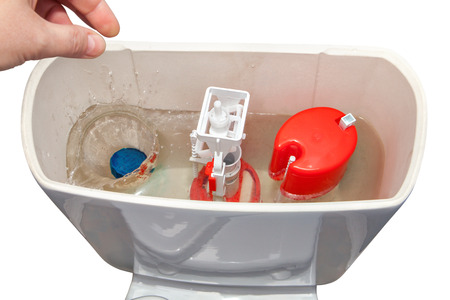 flushing: Hand down a cleanser in water flush tank toilet bowl.