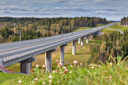 Steel girder bridge on reinforced concrete pillars, four-lane highway crosses the Russian forest, sunny summer day.