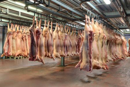 Veel bevroren varkenskarkassen hangen in de koude winkel.