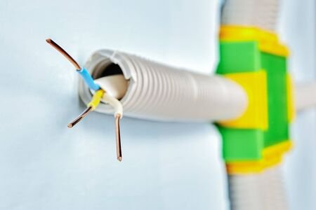 Home electrical wiring, hidden in a flexible plastic conduit running from the inside of the drywall wall, connected to a rectangular green plastic junction box. Household power networks. Stock Photo