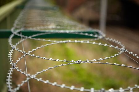 Selective focus on the blades of a spiral barbed wire against the background of stunted grass.