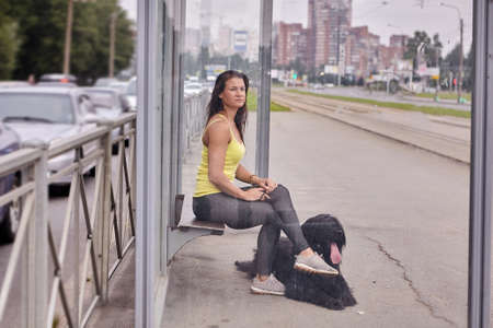 Woman and black long-haired briard on the tram stop. Young female is sitting with dog on the public transport station at the daytime.