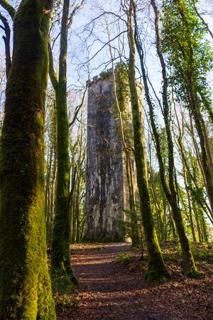 Located in the forrest near Ashford Castle, Cong, County Mayo, Ireland, the Guinness Tower is hidden amongst the trees.