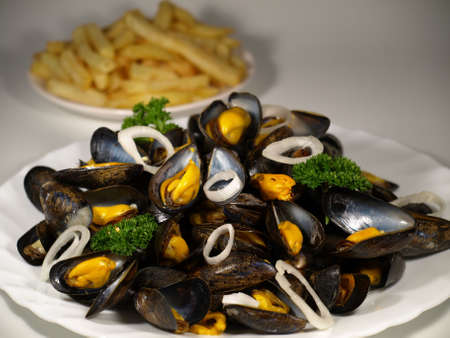 mussels: Fried mussels on a plate on white background