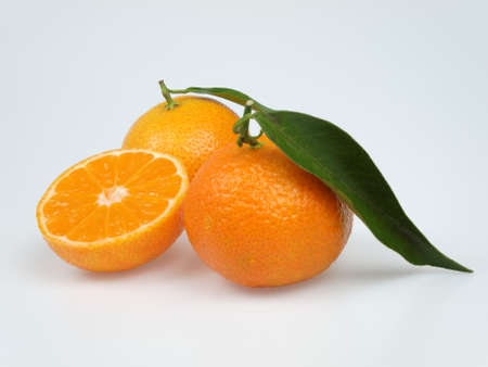 mandarin Stock Photo - 16481975
