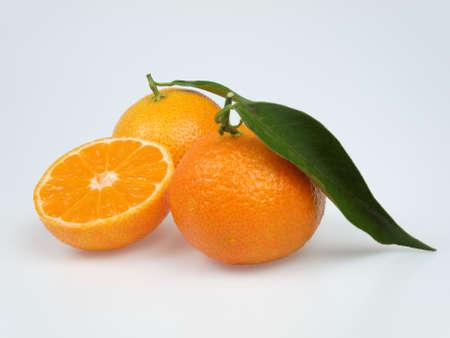 mandarin Stock Photo - 16481975
