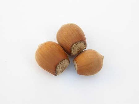 whole hazelnuts on a white background. nut macro.