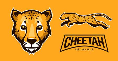 cheetah sport edition for mascot