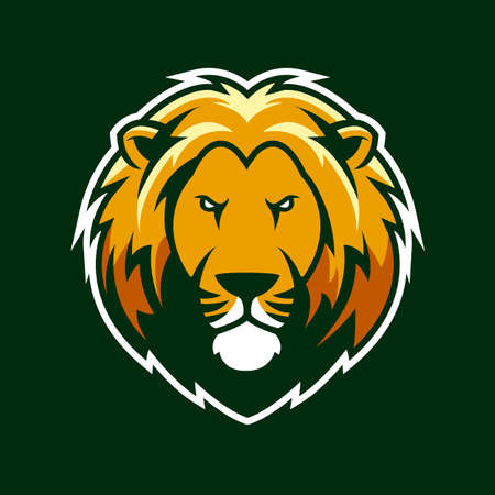 lion sport for macot