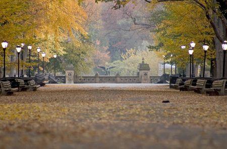 Literary walk in autumn_2