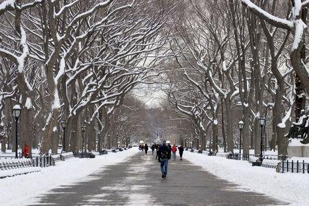 Literary walk in winter