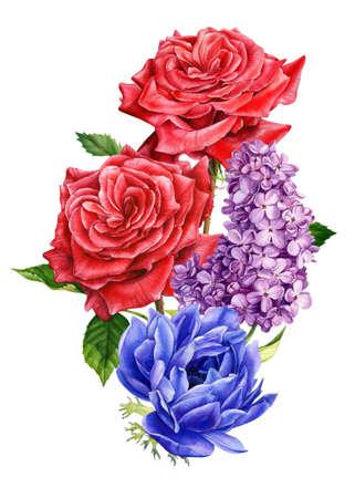bouquet of flowers, anemones, rose, lilac, watercolor botanical illustration. High quality botanical illustration Imagens
