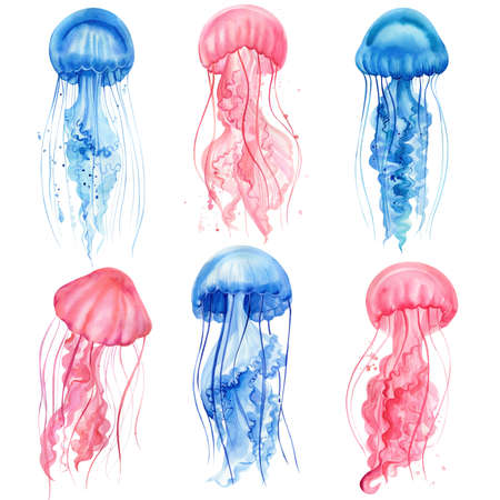 Beautiful jellyfish. Set of jellyfish drawings on a white isolated background. Watercolor illustration