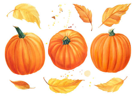 Autumn set of pumpkins, yellow leaves on isolated white background, watercolor illustration clipart